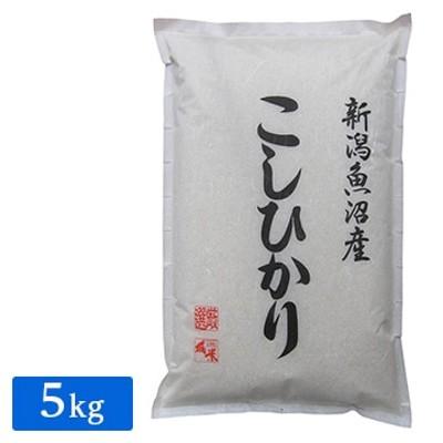遠藤米穀 産地直送 令和2年産 魚沼産コシヒカリ5kg