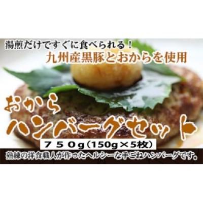 九州産黒豚おからハンバーグセット
