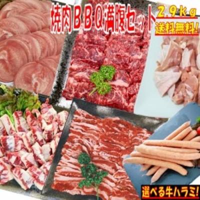 味付けハラミおまけ付 バーベキュー 肉 BBQ 食材 2.9kg 豚肉 バーベキュー 食材 BBQ 肉 タン 牛カルビ 牛バラ 牛ハラミ 豚カルビ 豚バラ