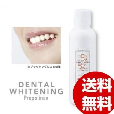 口内エステ ヤニ汚れ 白い歯 プロポリンス デンタルホワイトニング 600ml