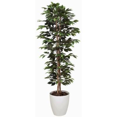 造花 観葉植物 光触媒 インテリアグリーン 鉢植え /ベンジャミンスリム180cm 357A33016