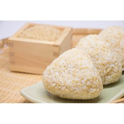 【2634-0025】令和2年産 石見地方 邑智郡産コシヒカリ 玄米8kg(2kg×4袋)