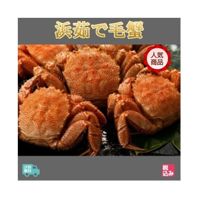 北海道産 浜茹 毛蟹 3ハイ 約1.2kg   送料無料!!