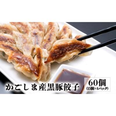 A1-0813/かごしま産黒豚ぎょうざ(60個)
