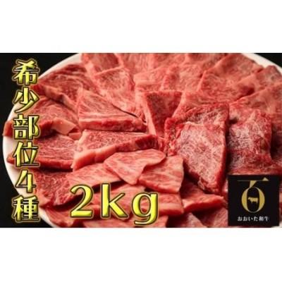 希少部位4種焼き肉セット2kg【匠牧場】おおいた和牛(特製タレ付)<56-G8001>