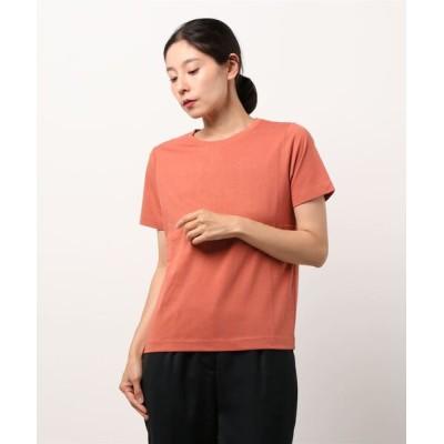 tシャツ Tシャツ きれいめクルーネックTシャツ*