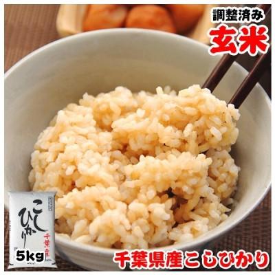玄米 お米 5kg 令和2年産 千葉県産 コシヒカリ 再調整済み
