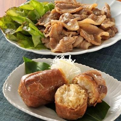 肉巻きおにぎりとタレ漬け豚肉 ご家庭用 宮崎 ご当地 グルメ 国産 豚肉 米 ひのひかり スタミナ 肉炒め 産直 お取り寄せ