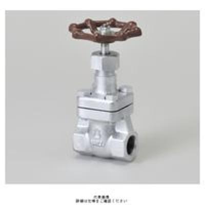 日立金属日立金属 マレブル仕切弁【ねじ込み・内ねじBB】 M20KSS-15A 1個(直送品)