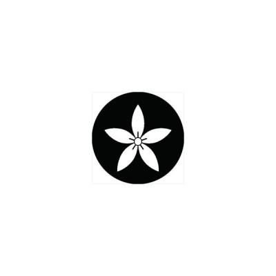 家紋シール 細桔梗紋 直径10cm 丸型 白紋 2枚セット KS10M-1259W