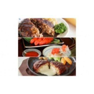 【D-019】かねふく辛子明太子&デミソースのハンバーグ2種セット【年4回発送定期便】