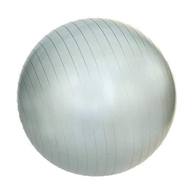 JFit AntiBurst Gym Ball with Pump 55cm  Silver 1 ball