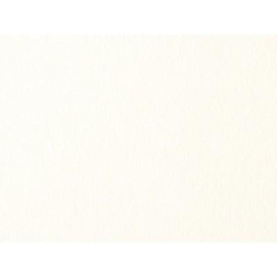 ミランダ スノーホワイト 100K A4 10枚