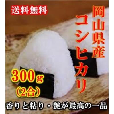 米 ポイント消化 送料無料 300 g 食品 お試し 米 こめ 令和元年産コシヒカリ 300g(2合) 1kg未満 こしひかり メール便 代引不可