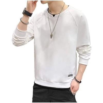 tシャツ メンズ パーカー 長袖 無地 秋服 ゆったり レイヤード風 大きいサイズ カジュアル 丸襟 柔らかい おしゃれ (s2103100852)