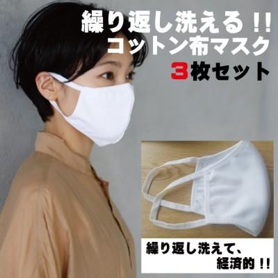 繰り返し洗える!コットン布マスク3枚セット 白マスク