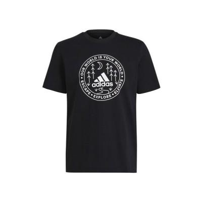 アディダス(adidas) エクスプロア ネイチャー グラフィック 半袖Tシャツ 31437-GL2840 (メンズ)