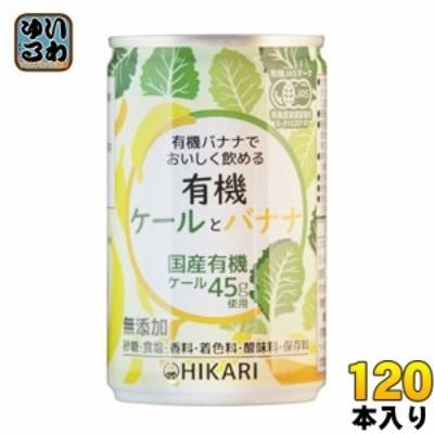 光食品 有機ケールとバナナ 160g 缶 120本 (30本入×4 まとめ買い)