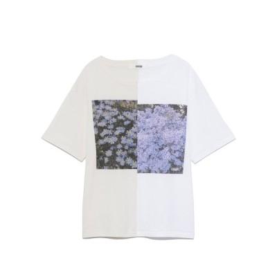 【ファーファー】 ハーフデザインプリントTシャツ レディース IVR F FURFUR