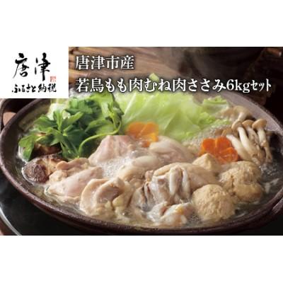 唐津市産 若鳥もも肉むね肉ささみ6Kgセット  【ふるなび】