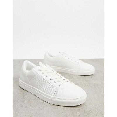 スティーブ マデン Madden by Steve Madden メンズ スニーカー シューズ・靴 trainers in white ホワイト