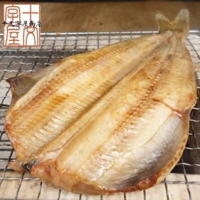 極寒のベーリング海アラスカ産 肉厚とろ縞ほっけ 大サイズ 400~500g ホッケ 開き干し 干物 一夜干し
