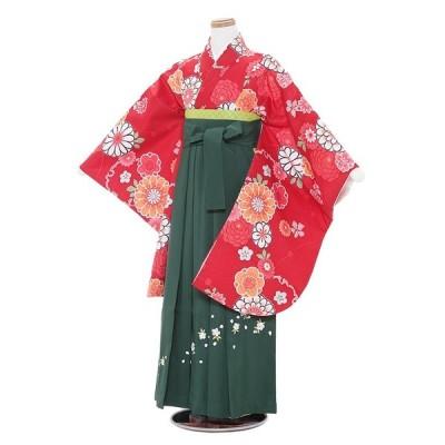小学生卒業式袴レンタル(女の子)A025 赤地梅菊×グリーン桜袴