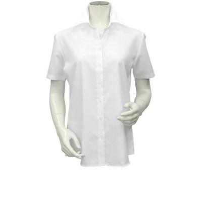 レディース ウィメンズシャツ 半袖 形態安定 スキッパー衿 オーガニックコットン100% 白×ストライプ織柄