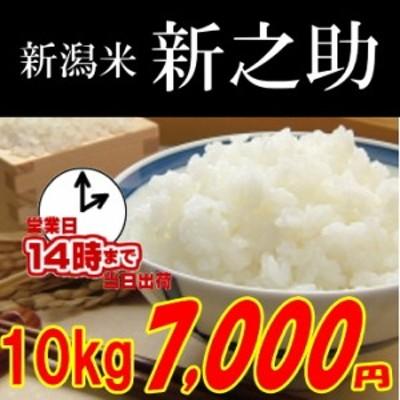 新潟 新之助10kg 玄米,白米,分搗き選択可能