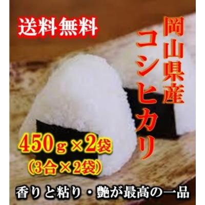 ポイント消化 送料無料 食品 お米 お試し 450 g 令和2年 岡山県産コシヒカリ450g (3合)×2袋 こしひかり 1kg以下 メール便 まとめ買い
