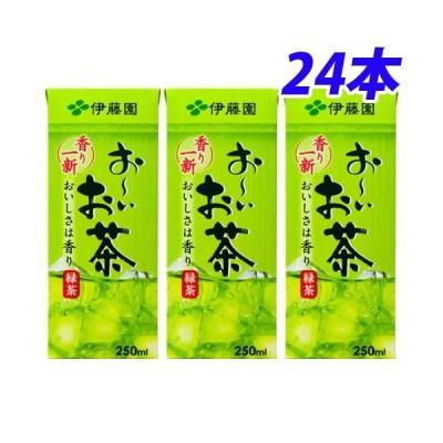 伊藤園 おーいお茶 250ml×24本 お茶 日本茶 紙パック パック飲料 飲料 ドリンク ソフトドリンク