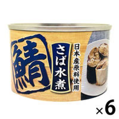 タイランドフィッシャリージャパン【アウトレット】タイランドフィッシャリージャパン さば水煮 0331165 1セット(160g×6缶)