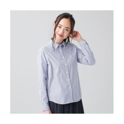 (+nokto/ノクト)シャツ カジュアル 長袖 レギュラー衿 綿100% レディース ウィメンズ/レディース ブルー