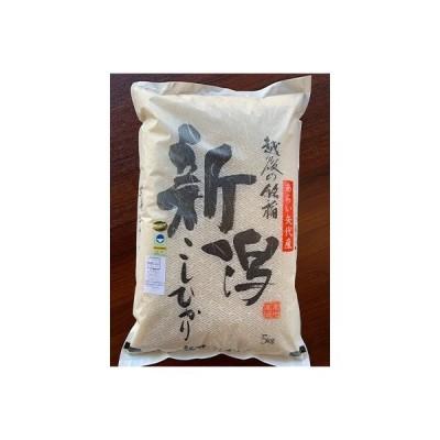 妙高市 ふるさと納税 【令和2年産】新潟県矢代産コシヒカリ 5kg