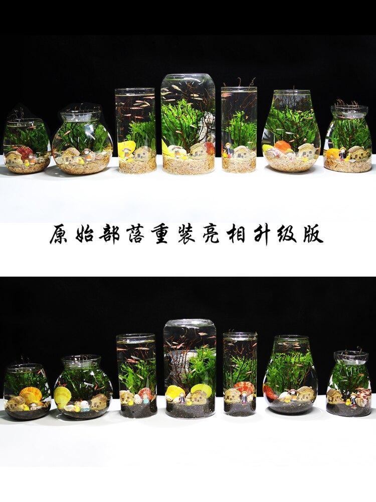 觀賞生態瓶魚微景觀免換水免打理diy水族辦公桌面創意造景魚缸(不送魚)