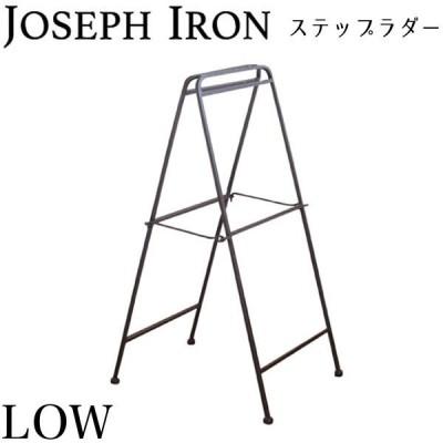 ジョセフアイアン ラダー ロータイプ 高さ78cm DTFF6220 アンティーク調 シンプル おしゃれ インテリア スパイス 代引不可