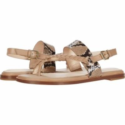 コールハーン Cole Haan レディース サンダル・ミュール トングサンダル G.OS Anica Thong Sandal Amphora Leather/Tonal Exotic Snake P