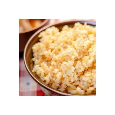 四万十市 ふるさと納税 【令和2年産】四万十清流の自然米 玄米5kg【コシヒカリ】