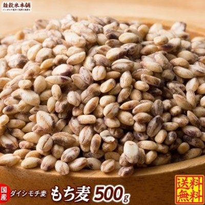 雑穀 麦 国産 もち麦 500g 送料無料 ダイシモチ 腸内環境 β-グルカン 善玉菌 腸を守るスーパーフード ダイエット食品 置き換えダイエッ
