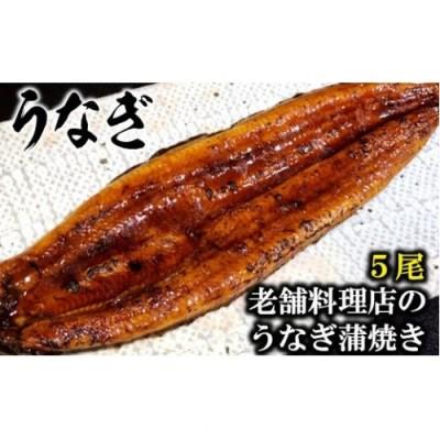 AE051老舗料理店のうなぎ蒲焼き(170g×5尾)