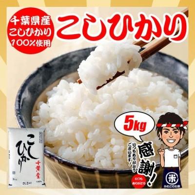 お米 5kg 令和2年産 千葉県産 コシヒカリ 精米方法選択可 ギフト対応