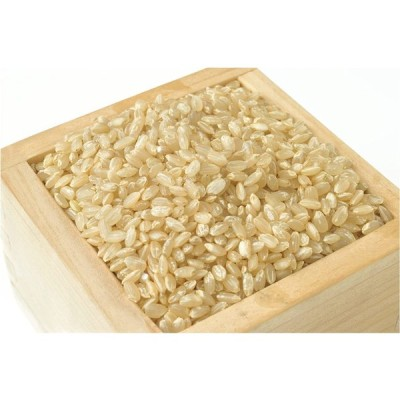 【精米】 【お米アドバイザー厳選米】 無洗米新潟産コシヒカリ 5kg