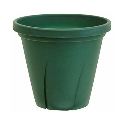 大和プラスチック 根はり鉢 3号 0.15L ダークグリーン