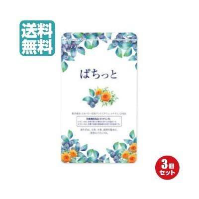 ビルベリー サプリメント アイケア ぱちっと 62粒 3袋セット 送料無料