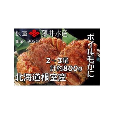ふるさと納税 【北海道根室産】ボイル毛がに2〜3尾(計約800g) B-42049 北海道根室市
