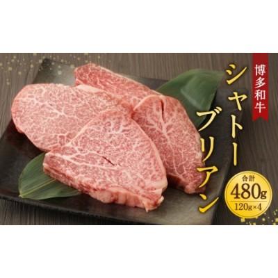 柳川産 博多和牛 シャトーブリアン 約120g×4 計480g