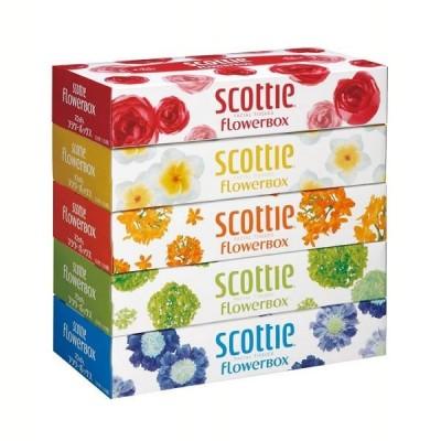 スコッティ ティッシュペーパー フラワーボックス 160組 5箱 ティシュー 320枚 日本製紙クレシア