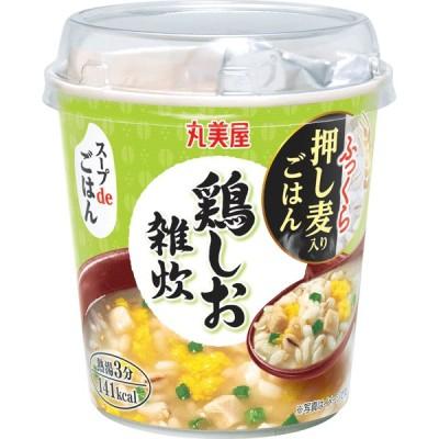 丸美屋 スープdeごはん鶏しお雑炊 70.3g×48個入り (1ケース6個入り、8ケースセット) (KT)