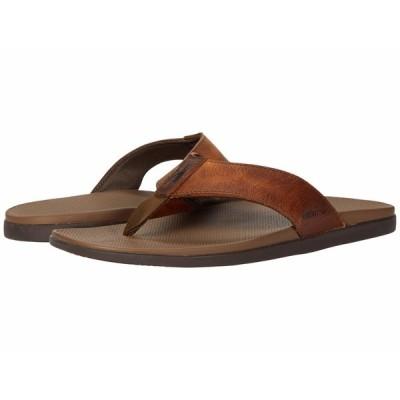 ジョニーオー サンダル シューズ メンズ Dockside Leather Toe Post Sandal Brown
