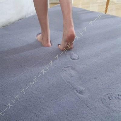 マイクロファイバー シャギー シャギーラグ 滑り止め 丸洗い 洗える ウォッシャブル ラグマット カーペット 絨毯 西海岸 北欧風 秋 冬 洗える